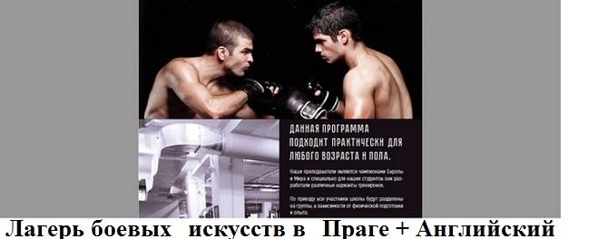 Лагерь боевых искусств в Праге + Английский